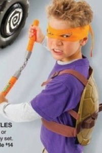 Teenage Mutant Ninja Power Action Figure