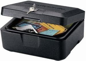 Sentry Safe 0.2 cu. ft. Fire Chest