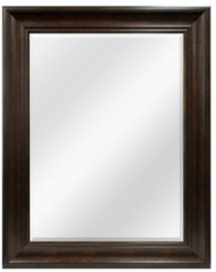 "Style Selections 38""x48"" Bronze Framed Mirror"