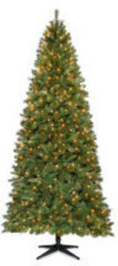 Entire Stock 6ft. & Taller Christmas Trees