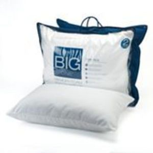 The Big One Twin-Pk Gel Memory Foam Pillows