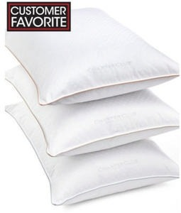 Charter Club Vail Collection Pillows