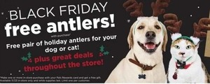 Pet Antlers w/ Purchase