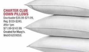 Charter Club Down Pillows