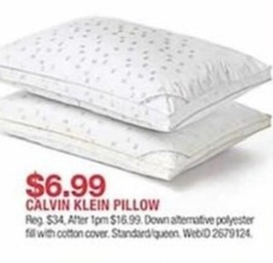 Calvin Klein Pillow