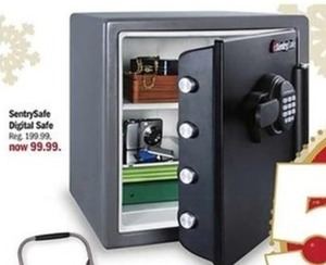 SentrySafe Digital Safe